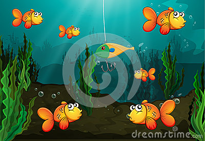 fish-caught-bait-illustration-being-watched-other-fishes-33689821