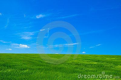 green-field-1-243324